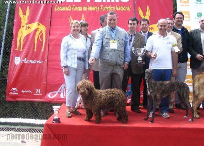 Feria del Perro de Archidona, final razas españolas 2007
